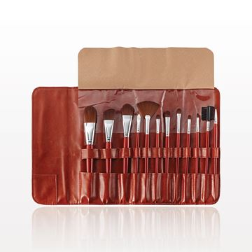 12-Piece Brush Set with Fold & Snap Case, Brown