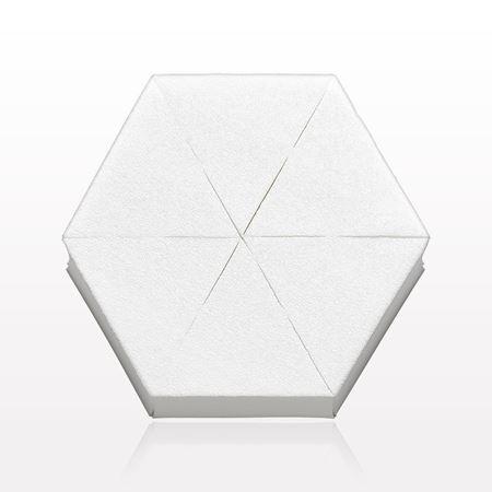 6-Piece Hex Sponge Block, White
